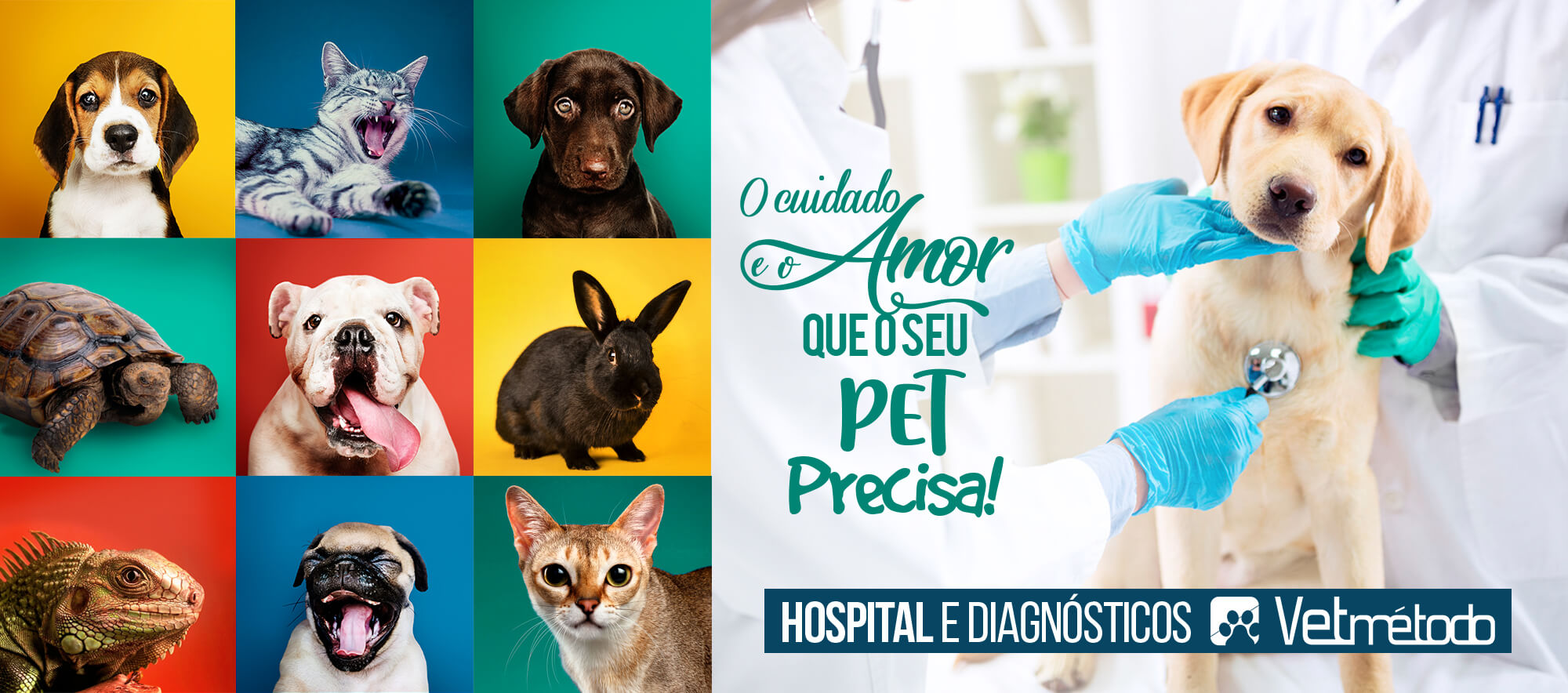 home-vetmetodo-hospital-diagnosticos