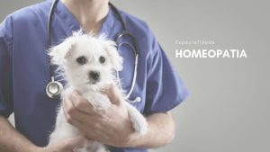 homeopatia veterinaria vetmetodo